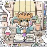 Γάτα αλχημιστών που παρασκευάζει μια φίλτρο Στοκ Εικόνες