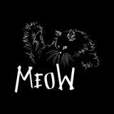 Γάτα απεικόνισης Στοκ Φωτογραφία