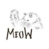 Γάτα απεικόνισης Στοκ εικόνες με δικαίωμα ελεύθερης χρήσης