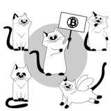 Γάτα Διανυσματικές γάτες καθορισμένες γραπτές διανυσματική απεικόνιση