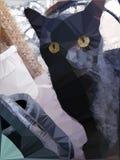 Γάτα εικονοκυττάρου διανυσματική απεικόνιση