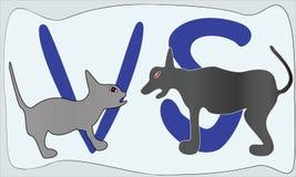 Γάτα εναντίον του σκυλιού Στοκ Εικόνες