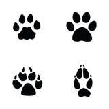 Γάτα, ιαγουάρος, σκυλί, ίχνος αλεπούδων Στοκ Εικόνες