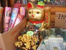 γάτα κινέζικα Στοκ Εικόνα