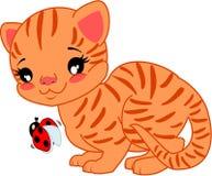 Γάτα κινούμενων σχεδίων με το ladybug Στοκ Εικόνες