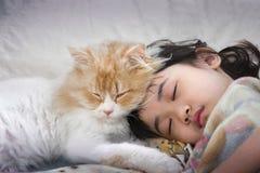Γάτα κοιμισμένη σε ένα μουντό απόγευμα Στοκ Φωτογραφίες