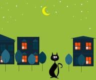 Γάτα τη νύχτα Στοκ Εικόνα