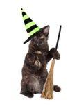 Γάτα μαγισσών αποκριών με τη σκούπα Στοκ Φωτογραφία