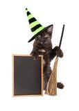 Γάτα μαγισσών αποκριών με τον κενό πίνακα κιμωλίας Στοκ φωτογραφία με δικαίωμα ελεύθερης χρήσης