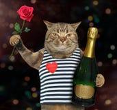 Γάτα με ροδαλό και το κρασί 2 Στοκ Εικόνα