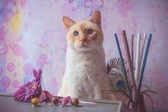Γάτα με τα κρύσταλλα εποξικής ρητίνης και το πλαστό λουλούδι και peacock feathe Στοκ Φωτογραφία