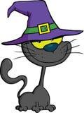 Γάτα με την απεικόνιση κινούμενων σχεδίων καπέλων μαγισσών ελεύθερη απεικόνιση δικαιώματος