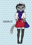 Γάτα μόδας, ύφος οδών Στοκ Φωτογραφίες