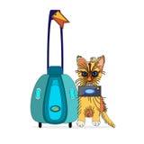 Γάτα ο εξερευνητής διανυσματική απεικόνιση