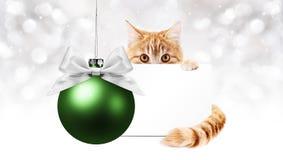 Γάτα πιπεροριζών και πράσινη σφαίρα Χριστουγέννων με τη ευχετήρια κάρτα δώρων, tem Στοκ Εικόνες