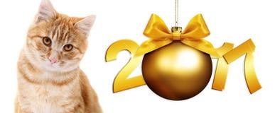 Γάτα πιπεροριζών και σφαίρα Χριστουγέννων με το χρυσό τόξο κορδελλών σατέν απεικόνιση αποθεμάτων