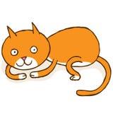 Γάτα που κατσαρώνουν επάνω Στοκ φωτογραφίες με δικαίωμα ελεύθερης χρήσης