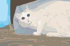 γάτα που φοβάται Στοκ Φωτογραφίες