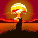 Γάτα σε ένα υπόβαθρο μιας πυρηνικής έκρηξης Στοκ Φωτογραφία