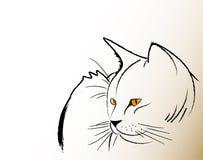 γάτα σοφή Στοκ φωτογραφίες με δικαίωμα ελεύθερης χρήσης