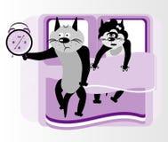 γάτα σπορείων Στοκ Εικόνες