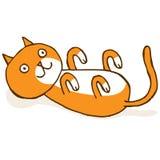 Γάτα στην πλάτη Στοκ Φωτογραφία