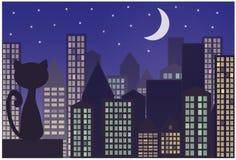 Γάτα στη στέγη της πόλης Στοκ εικόνα με δικαίωμα ελεύθερης χρήσης