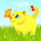 Γάτα στη χλόη που εξετάζει την πεταλούδα Στοκ εικόνες με δικαίωμα ελεύθερης χρήσης