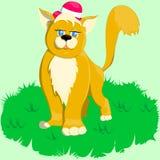 Γάτα στο καπέλο Στοκ φωτογραφία με δικαίωμα ελεύθερης χρήσης