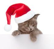 Γάτα στο κόκκινο καπέλο Χριστουγέννων που κρυφοκοιτάζει από πίσω από τον κενό πίνακα από κοινού Απομονωμένος στο λευκό Στοκ Φωτογραφίες