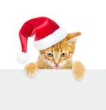 Γάτα στο κόκκινο καπέλο Χριστουγέννων που κρυφοκοιτάζει από πίσω από τον κενό πίνακα Απομονωμένος στο λευκό Στοκ εικόνες με δικαίωμα ελεύθερης χρήσης