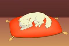 Γάτα στο μαξιλάρι Στοκ φωτογραφία με δικαίωμα ελεύθερης χρήσης