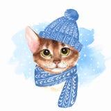 Γάτα στο μπλε καπέλο διανυσματική απεικόνιση