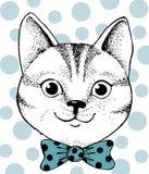 Γάτα στο τόξο Στοκ εικόνα με δικαίωμα ελεύθερης χρήσης