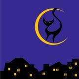 Γάτα στο φεγγάρι Στοκ εικόνα με δικαίωμα ελεύθερης χρήσης