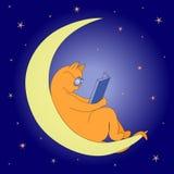 Γάτα στο φεγγάρι Στοκ φωτογραφία με δικαίωμα ελεύθερης χρήσης