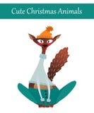 Γάτα Χριστουγέννων που φορά τα θερμά χειμερινά ενδύματα Στοκ Εικόνες