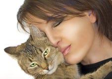 γάτα 5 που αγαπιέται Στοκ Εικόνες