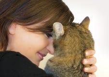 γάτα 6 που αγαπιέται Στοκ Φωτογραφίες