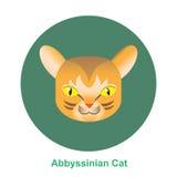 Γάτα Abbyssinian κινούμενων σχεδίων στη διανυσματική απεικόνιση κύκλων Στοκ φωτογραφία με δικαίωμα ελεύθερης χρήσης