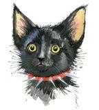 Γάτα cat cute Απεικόνιση γατών Watercolor Στοκ φωτογραφία με δικαίωμα ελεύθερης χρήσης