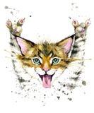 Γάτα cat cute Απεικόνιση γατών Watercolor Στοκ Φωτογραφία