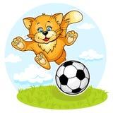 γάτα footboler Στοκ Εικόνες