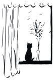 γάτα windowsill διανυσματική απεικόνιση