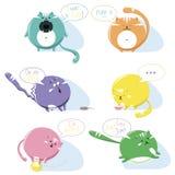 Γάτες Εικονίδια Στοκ Φωτογραφίες