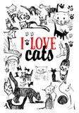 γάτες ι αγάπη Στοκ Εικόνες