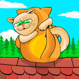 Γάτες που αγκαλιάζουν στη στέγη Στοκ εικόνα με δικαίωμα ελεύθερης χρήσης