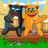 Γάτες που πίνουν την μπύρα Στοκ Εικόνες