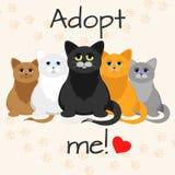 Γάτες σε ένα ύφος κινούμενων σχεδίων Μην ψωνίστε, να υιοθετήσουν Έννοια υιοθέτησης γατών Στοκ εικόνα με δικαίωμα ελεύθερης χρήσης