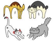 Γάτες τεντώματος Στοκ Εικόνες